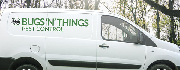 bugs n things pest control bedfordshire